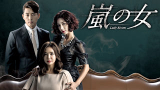 韓国ドラマ 嵐の女