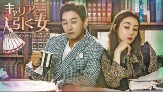 韓国ドラマ キャリアを引く女