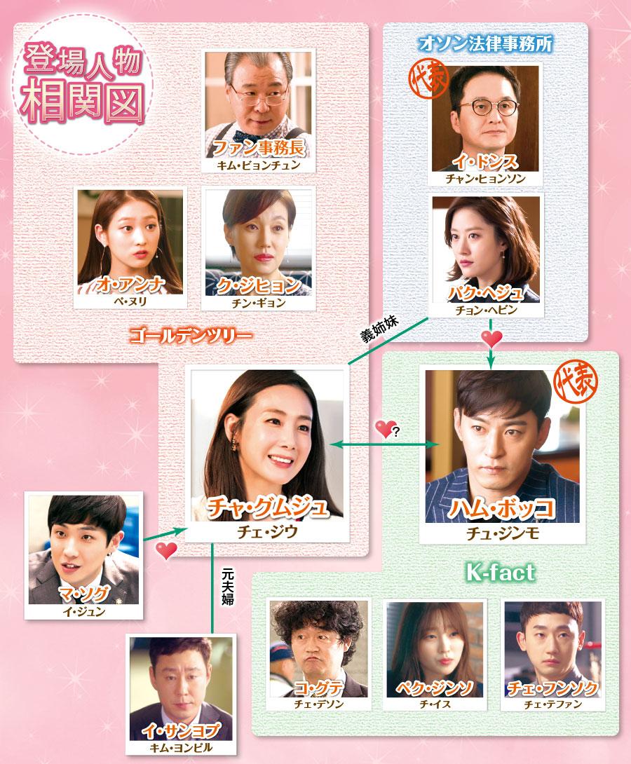韓国ドラマ キャリアを引く女-登場人物とキャスト&相関図